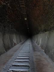 隧道內,其實還算亮啦~