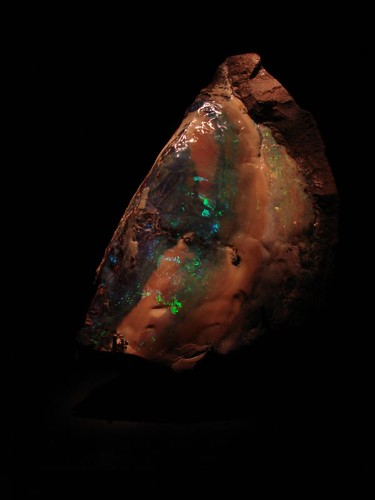 Opal at Museum of Natural Science and History