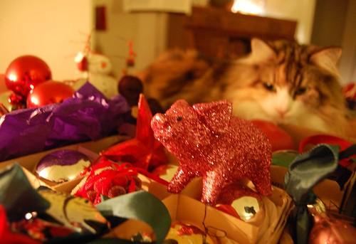 Rosina looking at Christmas ornament