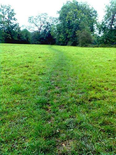 field track