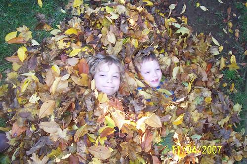 Fun in the Fall