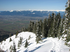 Elk Mountain snowshoe, 17 Feb 2008