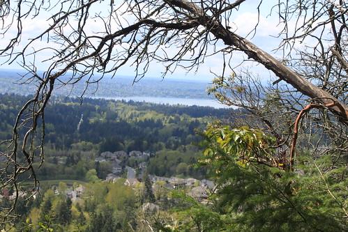 Cougar Mountain - De Leo Wall Trail - Panaroma View 1