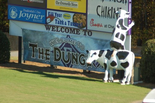 The Dung??
