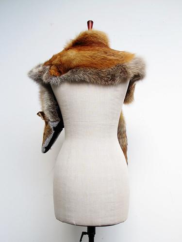 bara baras - fox back