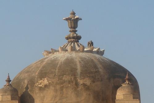 Jahangir Mahal Fort_為愛妾建1-17