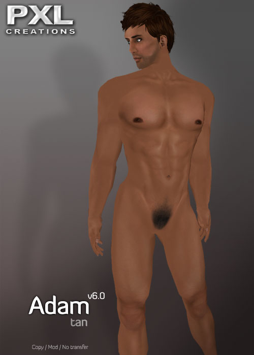 Adam Tan V6