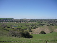 The Santa Ynez valley, Santa Barbara wine country
