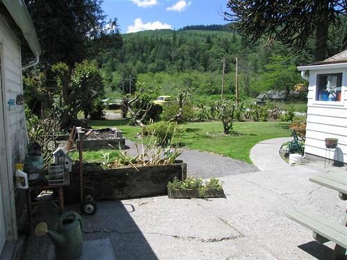 Front yard May 05 (Medium)