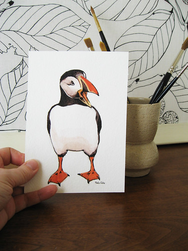 Mr. Puffin, again.