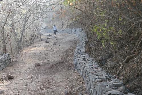 Stone wall, Vetal Tekdi