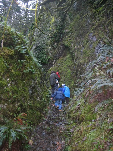 Quick Gorge Walk