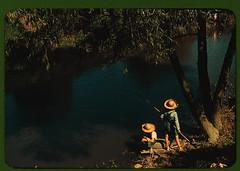 Boys fishing in a bayou, Schriever, La. Cajun ...