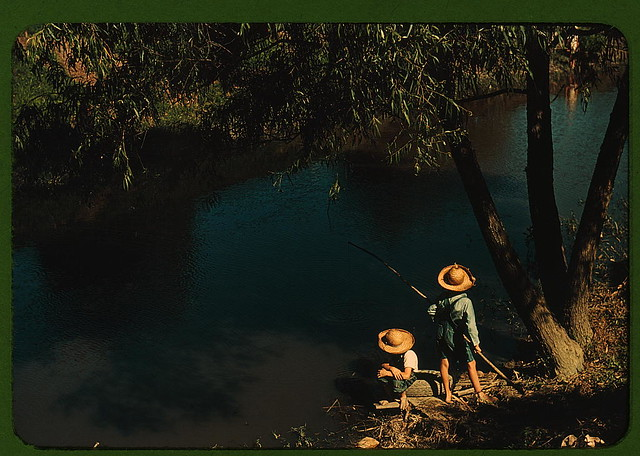 Boys fishing in a bayou, Schriever, La. Cajun children in a bayou near the school. Terrebonne, a Farm Security Administration project (LOC)