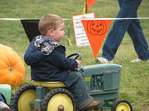 Little Tractor Boy