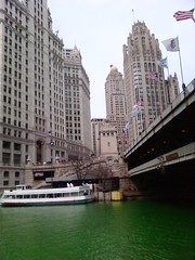 Dyed Chicago River