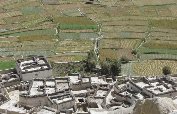 Dhi village, Mustang