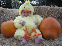 Claire in her hallween costume as a chicken