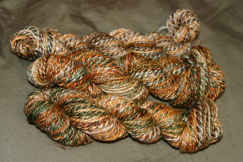 2-ply not-quite-bulky handspun from Spunky Eclectic superwash merino in Dinosaur