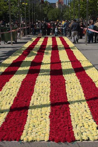 Flores y bandera