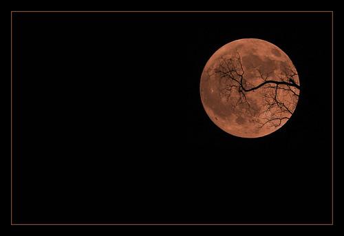 Smoke Tinged Halloween Moon