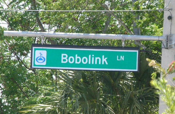 Bobolink Lane