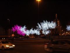 La Glorieta del Emperador Carlos V se preparaba con luces para recibir la navidad de 2007