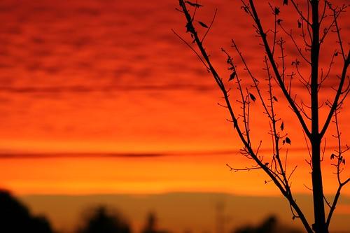 2007 Sunset 2438