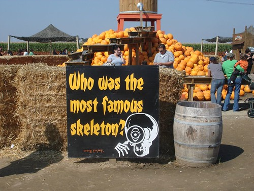 Who was the most famous skeleton?