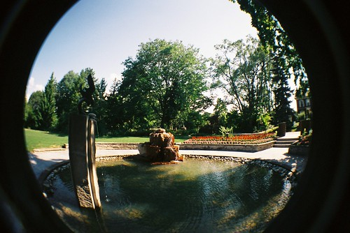 Fish eye in the cemetary