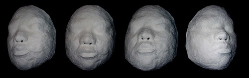 Face Cast Phase2