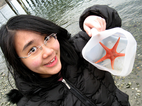A starfish!