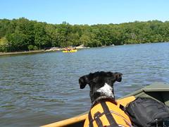 Lake Ridge Park Rowing - Jimmie Looks at Canoe