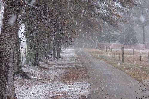 Jan19-08 Snowy Driveway