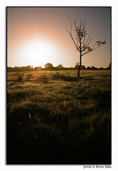 Tipperary Sunrise