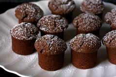 chocolate yogurt snack cakes