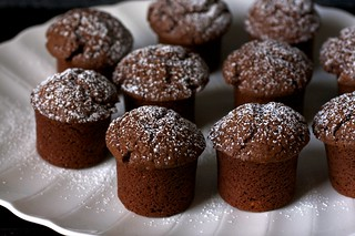 chocolate yogurt snack cakes