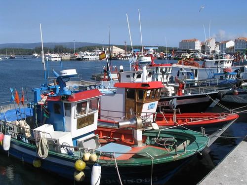 Barcos de pesca a todo color