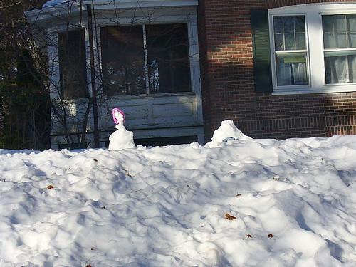 Sorry snowfolk