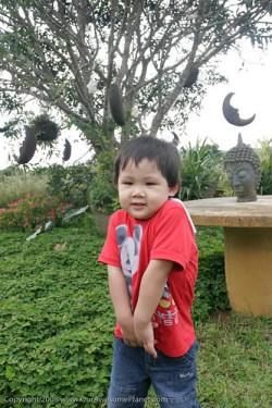Moon Garden, Tagaytay-3