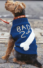 As an earworm, it makes a really cute doggie sweater!  Not that I would make one for Leonardo, of course.  Id be at that forever!  LOL