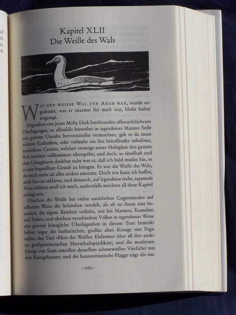 Kapitel 42, Die Weiße des Wals