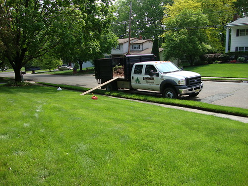 Spring Clean-up:  Wendel's Truck