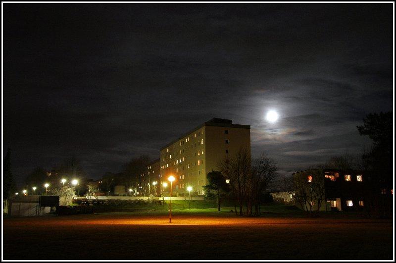 Hunting moon