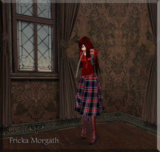 Tartan Kitty - 2-29 Blog 1