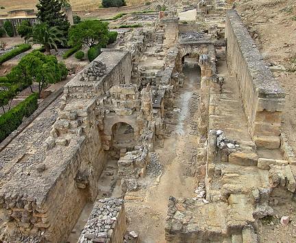 Camino de Ronda Bajo Medina Azahara TA