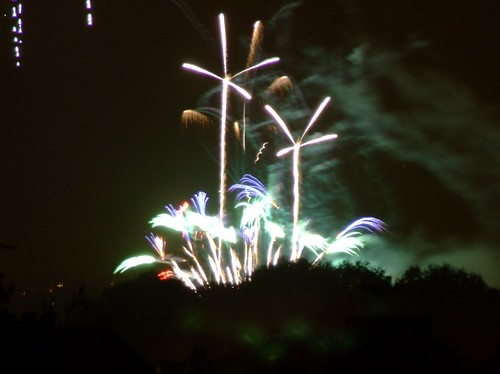 Fire Palms