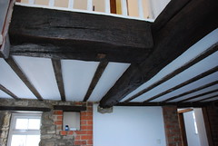 Replica reproduction beams
