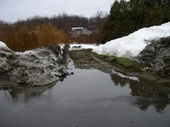 Drainage to wetland?