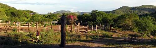 Terrabona landskab